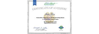 Ancestry Certificate