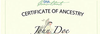 Deluxe Native American/American Indian Certificate