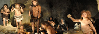 Neanderthal DNA Test