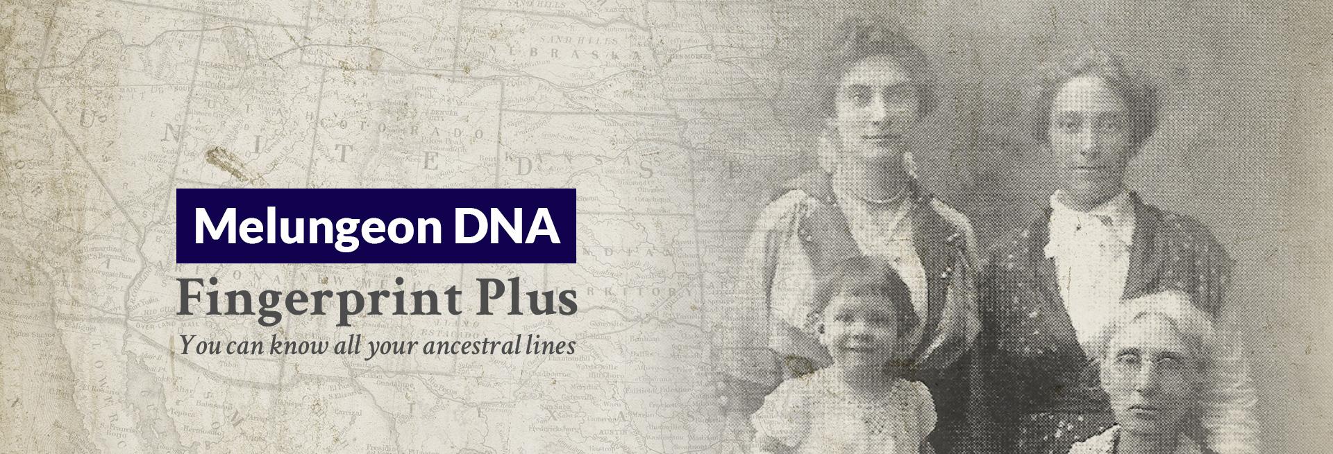 Melungeon DNA Fingerprint Plus