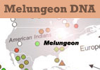 Melungeon DNA Test