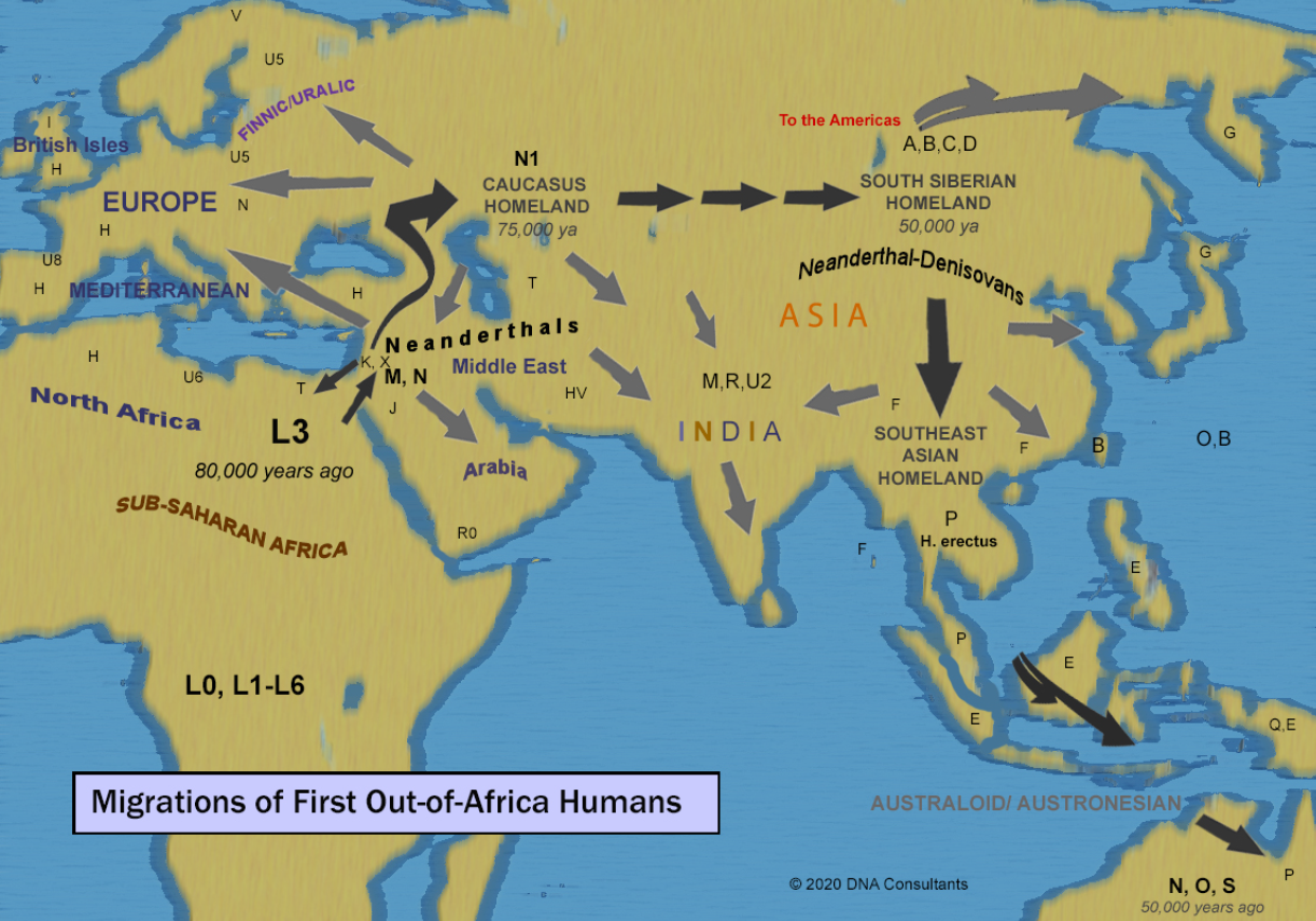 Migrations of First Out of Africa Humans