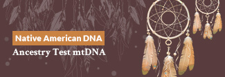 Native American DNA Ancestry Test mtDNA