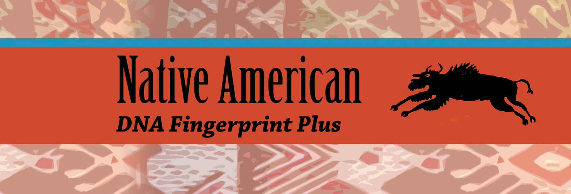 Native American DNA Fingerprint Plus Test