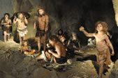 Neanderthal Update