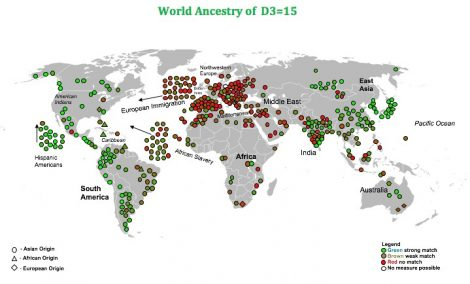 world ancestry map d3 15