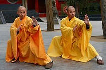 Practitioners of qinna