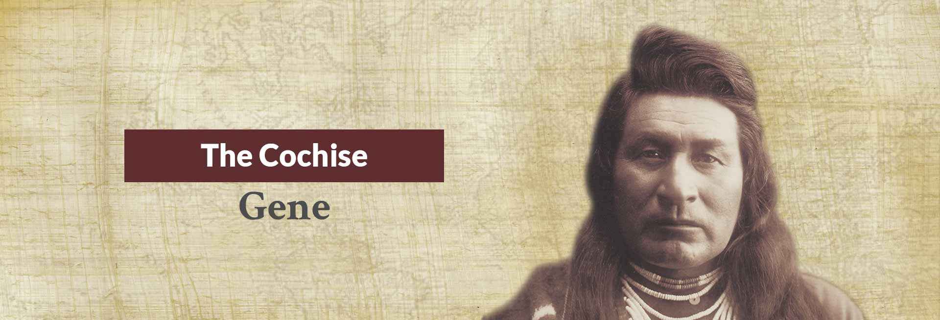 The Cochise Gene Banner