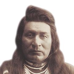 The Cochise Gene