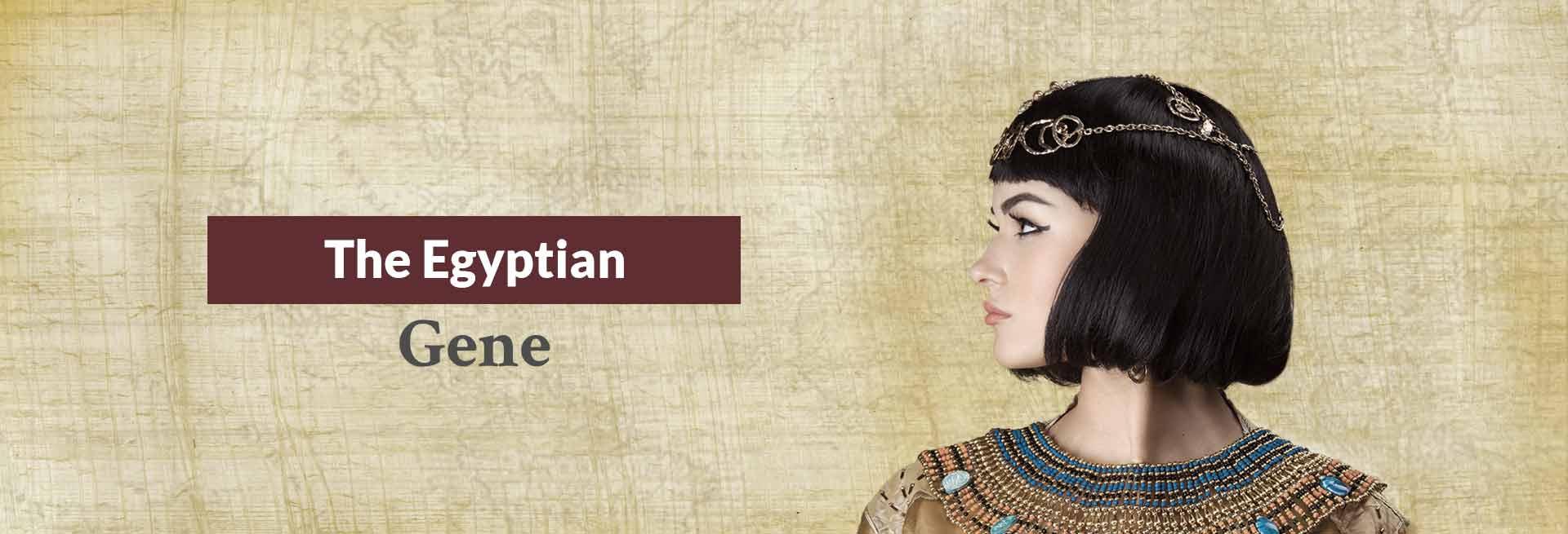 The Egyptian Gene Banner