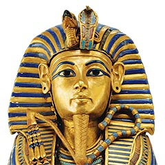 The King Tut Gene