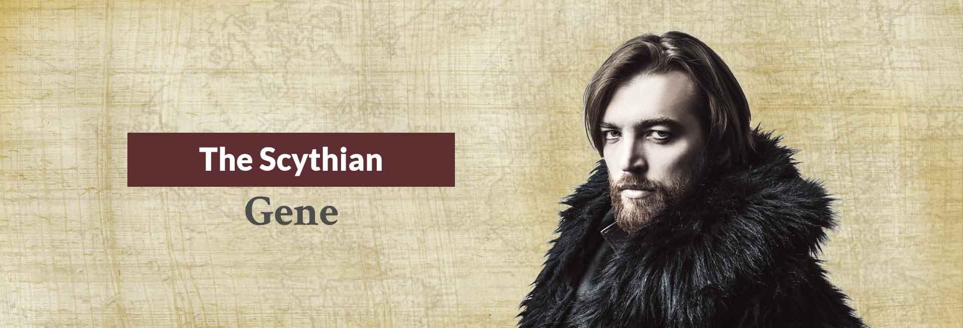 The Scythian Gene Banner