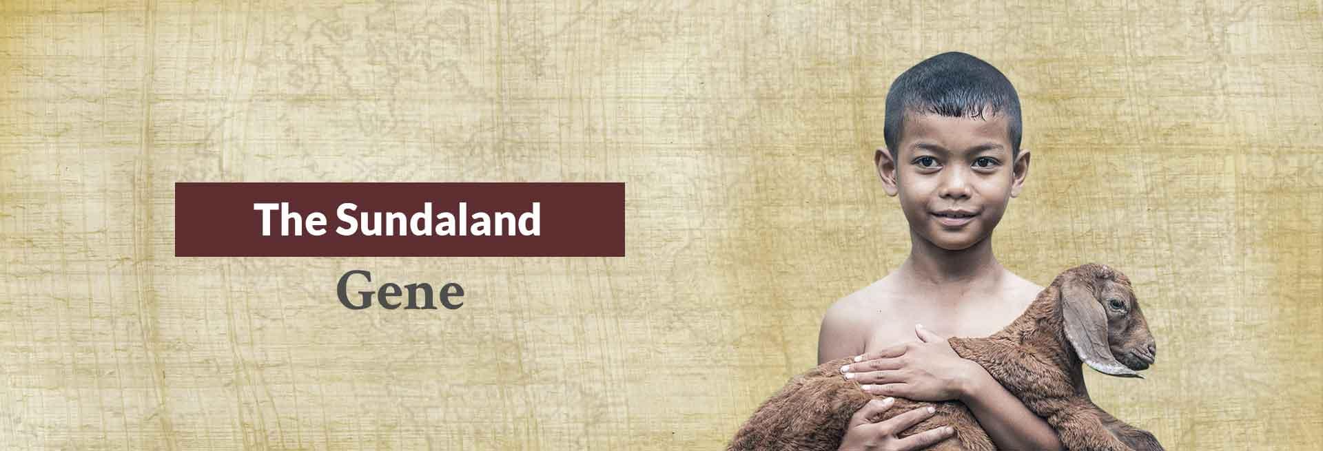 The Sundaland Gene Banner