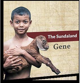 The Sundaland Gene